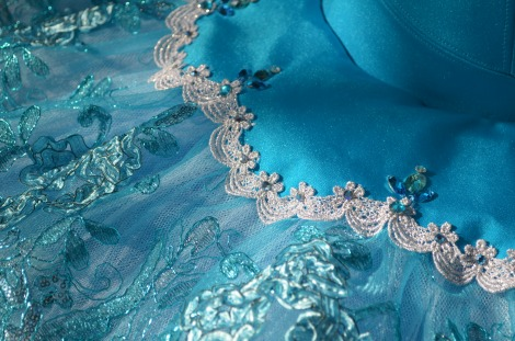 Blue Stretch tutu