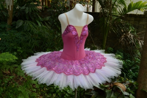 small Dusty Rose Tutu (2) (640x424)