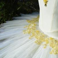 skirt detail (640x424)
