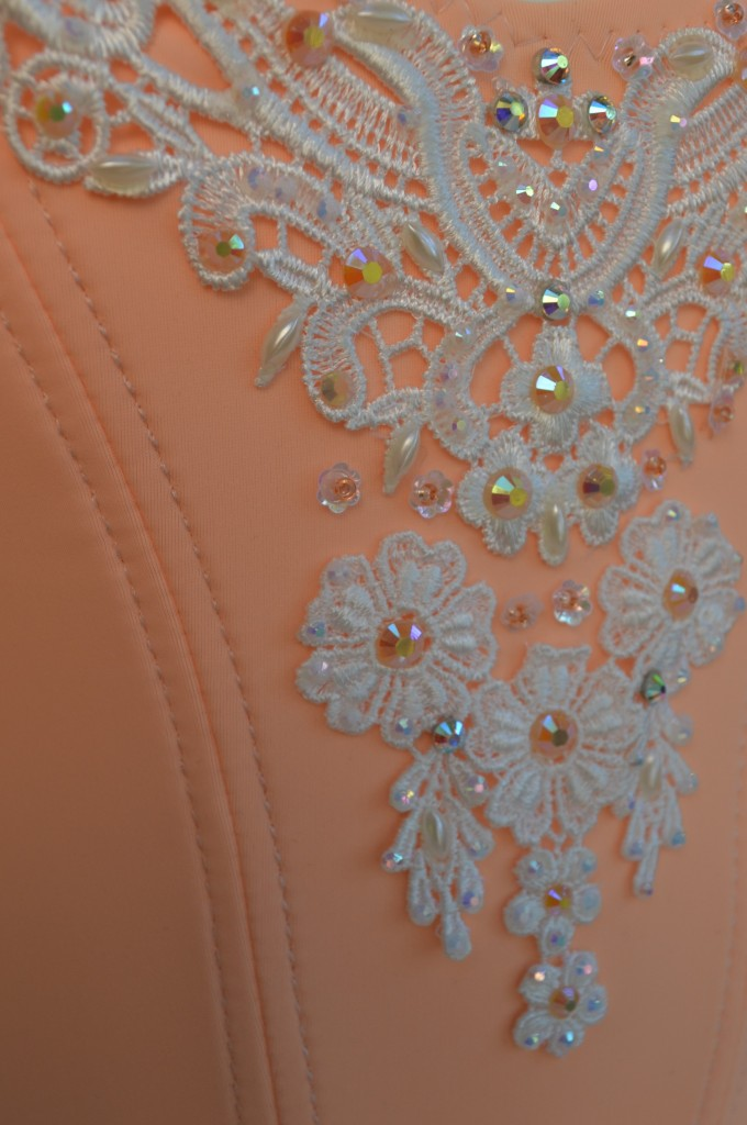 bodice detail (2)